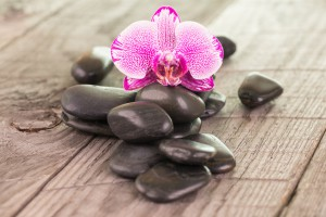 Hot Stone Massage, Wellness